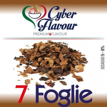Concentré Cyber Flavour - 7 Foglie 10ml