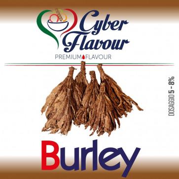 Concentré Cyber Flavour - Burley 10ml