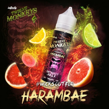 Liquide prêt-à-vaper Twelve Monkeys Vapors - Harambae - 50ml